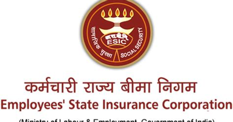 Essay on insurance sector in india